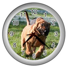 Bloodhound Running Wall Clocks (Silver)