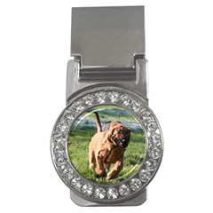 Bloodhound Running Money Clips (CZ)