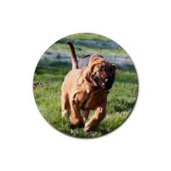 Bloodhound Running Rubber Round Coaster (4 pack)