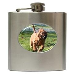 Bloodhound Running Hip Flask (6 oz)
