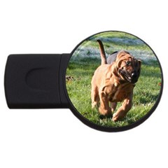 Bloodhound Running USB Flash Drive Round (1 GB)