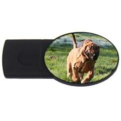 Bloodhound Running USB Flash Drive Oval (1 GB)
