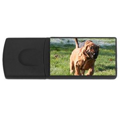 Bloodhound Running USB Flash Drive Rectangular (1 GB)