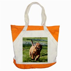 Bloodhound Running Accent Tote Bag
