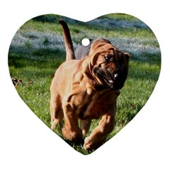 Bloodhound Running Heart Ornament (Two Sides)