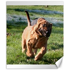 Bloodhound Running Canvas 20  x 24