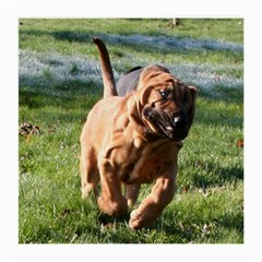 Bloodhound Running Medium Glasses Cloth