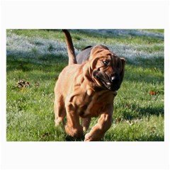 Bloodhound Running Large Glasses Cloth