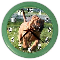 Bloodhound Running Color Wall Clocks