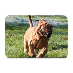Bloodhound Running Plate Mats