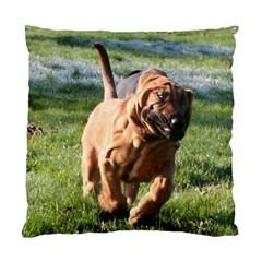 Bloodhound Running Standard Cushion Case (One Side)