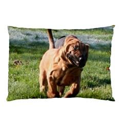 Bloodhound Running Pillow Case