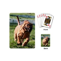 Bloodhound Running Playing Cards (Mini)
