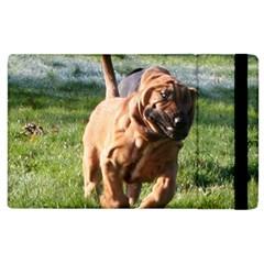 Bloodhound Running Apple iPad 3/4 Flip Case