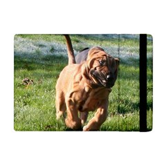 Bloodhound Running Apple iPad Mini Flip Case