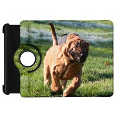 Bloodhound Running Kindle Fire HD 7
