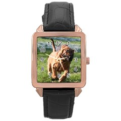 Bloodhound Running Rose Gold Leather Watch