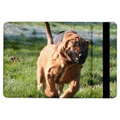Bloodhound Running iPad Air Flip