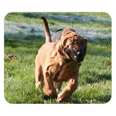 Bloodhound Running Double Sided Flano Blanket (Small)