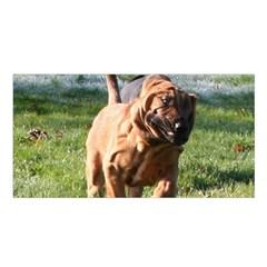 Bloodhound Running Satin Shawl
