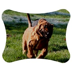 Bloodhound Running Jigsaw Puzzle Photo Stand (Bow)