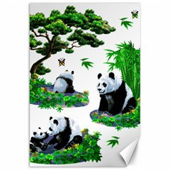 Cute Panda Cartoon Canvas 20  X 30
