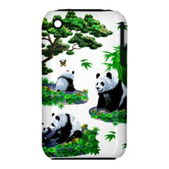Cute Panda Cartoon iPhone 3S/3GS