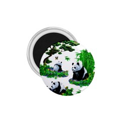Cute Panda Cartoon 1 75  Magnets