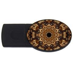 3d Fractal Art USB Flash Drive Oval (2 GB)