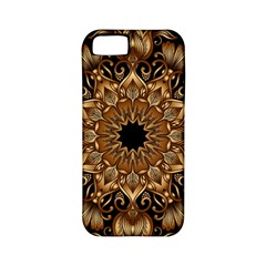 3d Fractal Art Apple iPhone 5 Classic Hardshell Case (PC+Silicone)