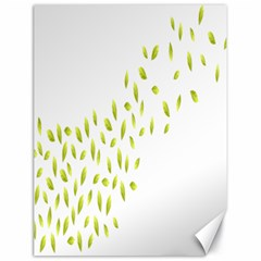 Leaves Leaf Green Fly Landing Canvas 18  x 24