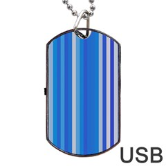 Color Stripes Blue White Pattern Dog Tag USB Flash (Two Sides)