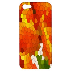 Mosaic Glass Colorful Color Apple iPhone 5 Hardshell Case