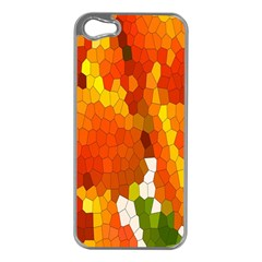 Mosaic Glass Colorful Color Apple Iphone 5 Case (silver)