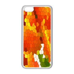 Mosaic Glass Colorful Color Apple iPhone 5C Seamless Case (White)