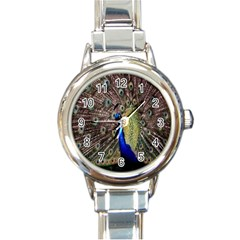 Multi Colored Peacock Round Italian Charm Watch