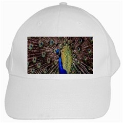 Multi Colored Peacock White Cap
