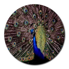 Multi Colored Peacock Round Mousepads