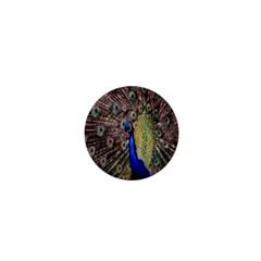 Multi Colored Peacock 1  Mini Buttons