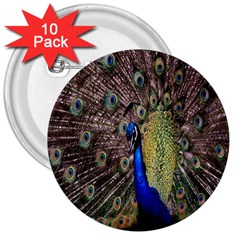 Multi Colored Peacock 3  Buttons (10 Pack)