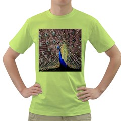 Multi Colored Peacock Green T Shirt