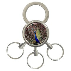 Multi Colored Peacock 3-Ring Key Chains