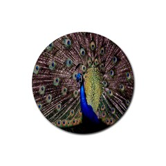 Multi Colored Peacock Rubber Coaster (Round)