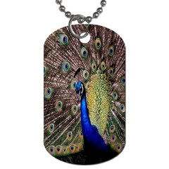 Multi Colored Peacock Dog Tag (One Side)