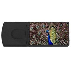 Multi Colored Peacock USB Flash Drive Rectangular (1 GB)