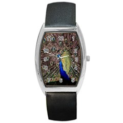 Multi Colored Peacock Barrel Style Metal Watch
