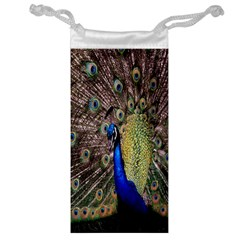 Multi Colored Peacock Jewelry Bag