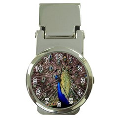 Multi Colored Peacock Money Clip Watches