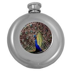Multi Colored Peacock Round Hip Flask (5 oz)