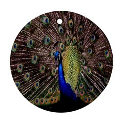 Multi Colored Peacock Round Ornament (Two Sides)